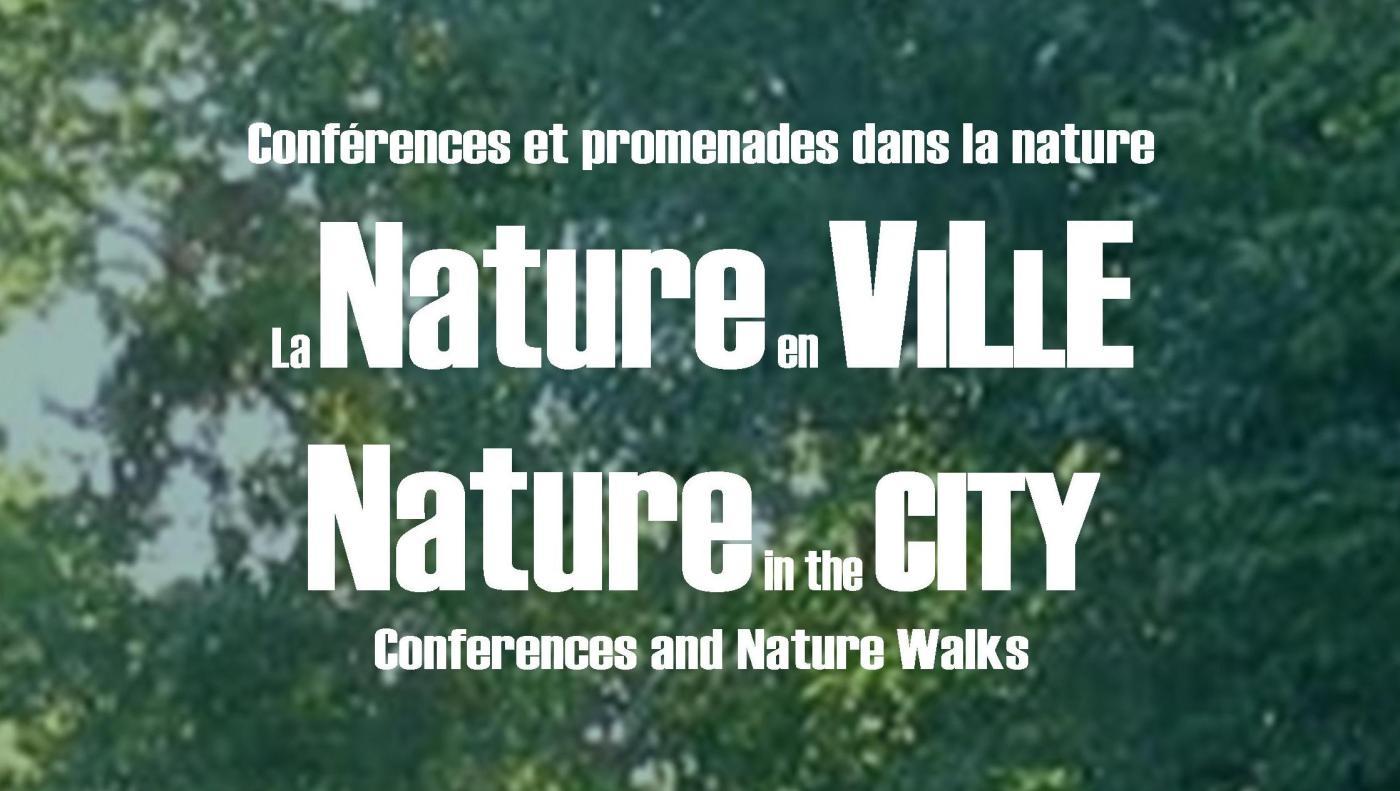 natureseries_logo